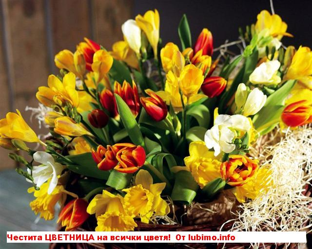 Честит имен ден момичета с чудни имена на цветя!