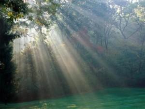 Живота е като огледало - каквото направиш, такова ще ти се връща!