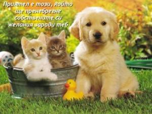Приятел е този, който ще пренебрегне собствените си желания заради теб