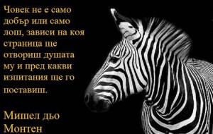 Любими цитати